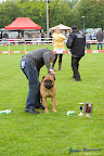 20100513-Bullmastiff-Clubmatch_31014.jpg