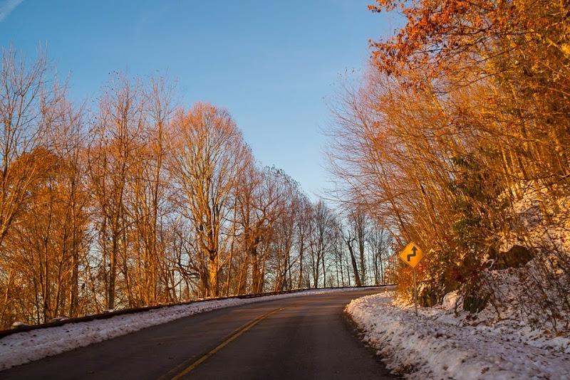 november snow-18369