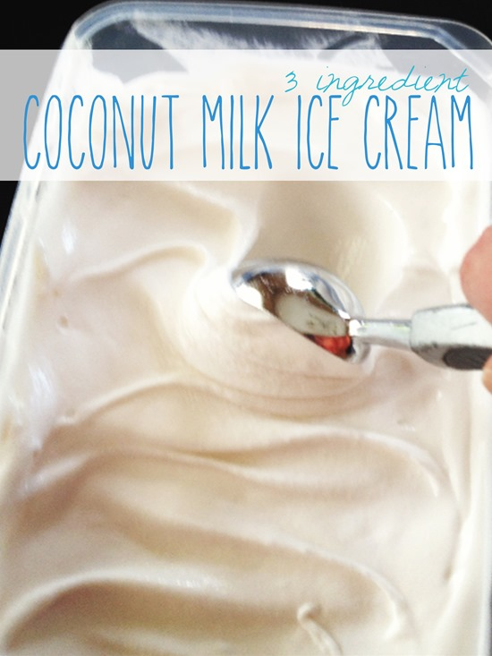 Coconut Milk Ice Cream