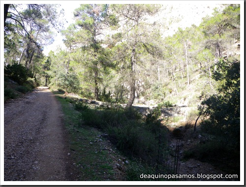 Via Carrillo - del Campo 160m 6b  (Pared Sur de Leiva, Sierra Espua, Murcia) (Isra) 2876
