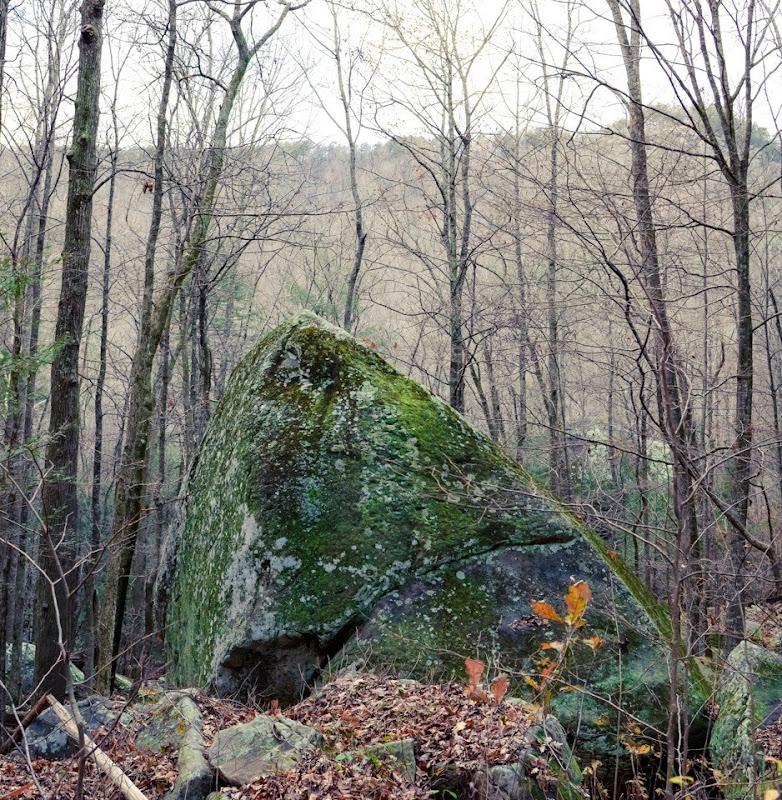 Laurel Snow area visit-17908