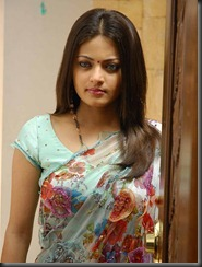 sneha-ullal-in saree_closeup