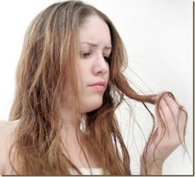 Tratamiento para el cabello seco2