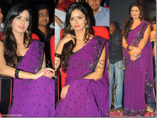 Meenakshi_Dixit_Purple_Saree