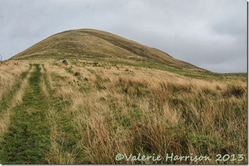 5-grassy-hill