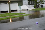 Rain Caused Flooding At Stonehouse & Francis Area (Photos by Meir Rothman) - DSC_0142.JPG
