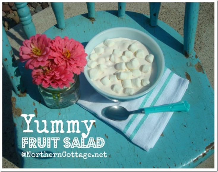 northern cottage yummy fruit salad