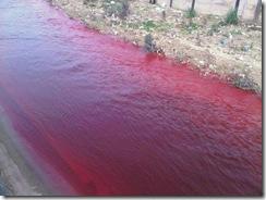 Кровавая река в Беруте