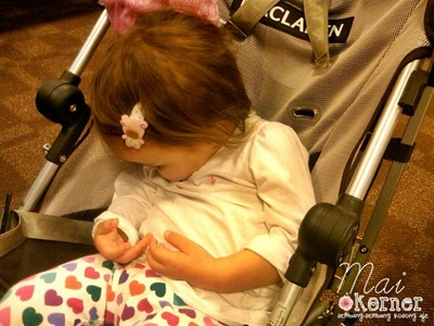 IMG-20111125-00177-e
