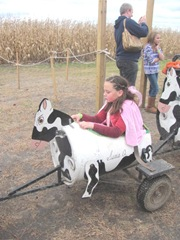 10.29.11 Cousins halloween get together Hope riding in the cow