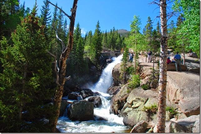 06-23-14 A RMNP Alberta Falls Loop (66)