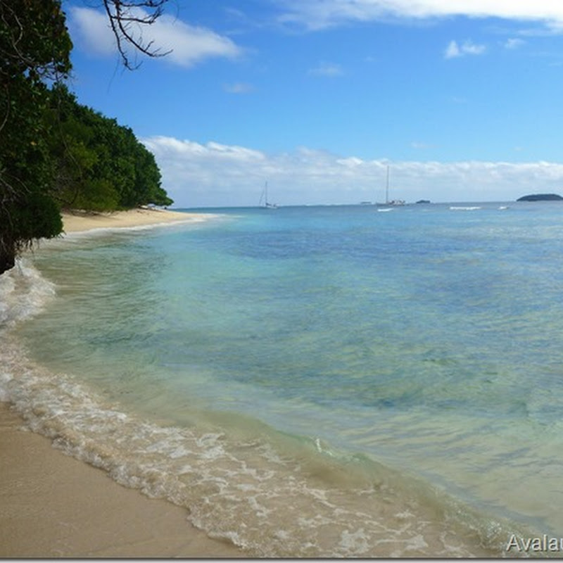Logbook: Avalau and Mounu (Vava'u, Tonga)