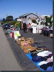 Dog park garage sale, Val's garden 014