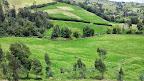 Recorrido por el Rio Bogota unidos por la recuperación de un instrumento de desarrollo agropecuario (9).jpg