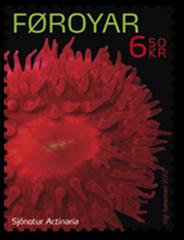 PPA010212_b