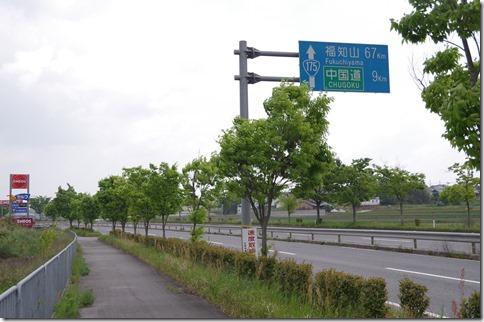 IMGP0252