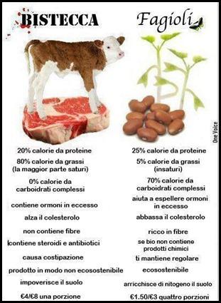 Scegli da dove assumere le proteine che ti servono