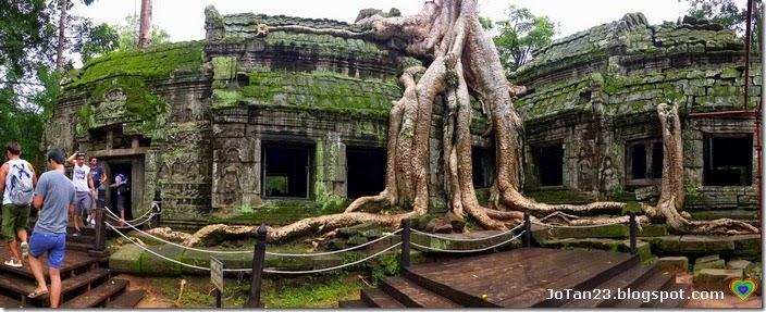 ta-prohm-siem-reap-cambodia-jotan23 (1)