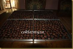 Coklat Badam 009