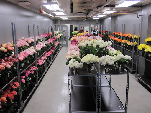 A picture of the shop. Anyone can stop by to see their showcase of their 2011 rose collection  -- the last day is today (Wednesday January 12, 2011).