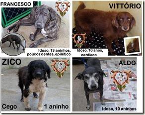 abeac_resgatados (4)