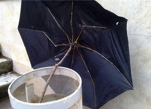 Зонтик починил