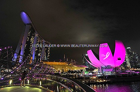 Estee Lauder 20th Anniversary Breast Cancer Awareness Campaign Elizabeth Hurley, Estée Lauder's spokesperson Global Landmarks Pink Illumination Empire State Building Art Science Museum Marina Bay Sands Singapore Charity Auction