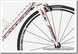 Colnago ACE 2013 (6)