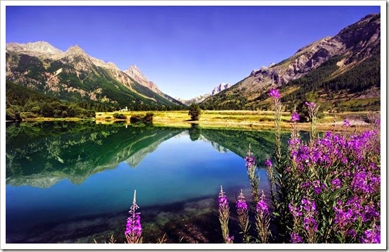 mountain-trees-river-flowers-r_1600x900