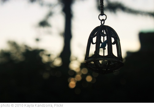 'birdcage :)' photo (c) 2010, Kayla Kandzorra - license: http://creativecommons.org/licenses/by/2.0/