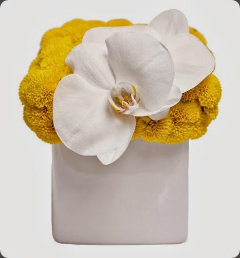 mums IMG_1111_HighRes floral art