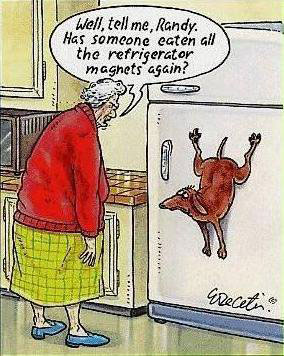 "An old says to a guilty-looking dog stuck vertically to the door of a refrigerator, ""Well, tell me, Randy. Has someone eaten all the refrigerator magnets again?"""
