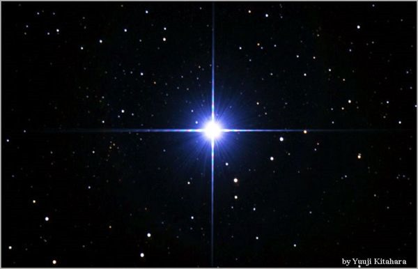 bintang-sirius