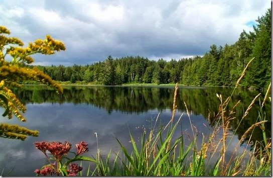 Hapgood Pond, Manchester, Vermont