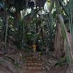 seychelles1_20070412_1872815022.jpg