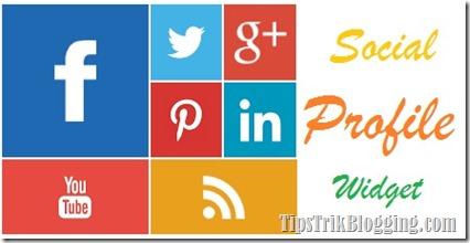 social profil widget keren