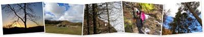 View Castlerigg hall 032014