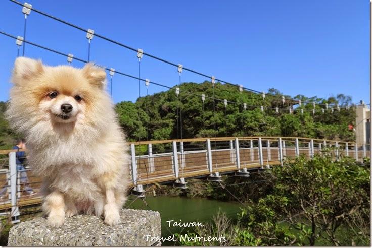 基隆情人湖 環湖步道 (34)