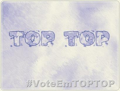 TOP TOP 2013