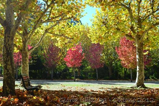 Glória Ishizaka - Folhas de Outono - Portugal 15
