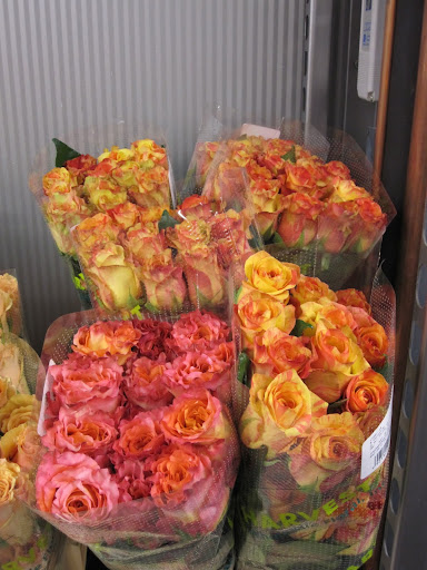 You can find many bicolor roses throughout the store -- a rose that has more than one color.