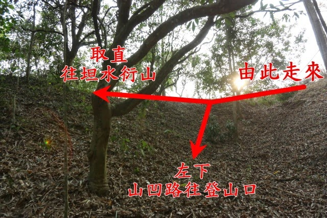 2014_0301_155800