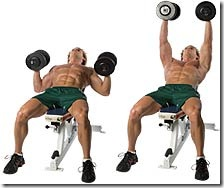Best Chest Exercises And Practices Upper Muscle
