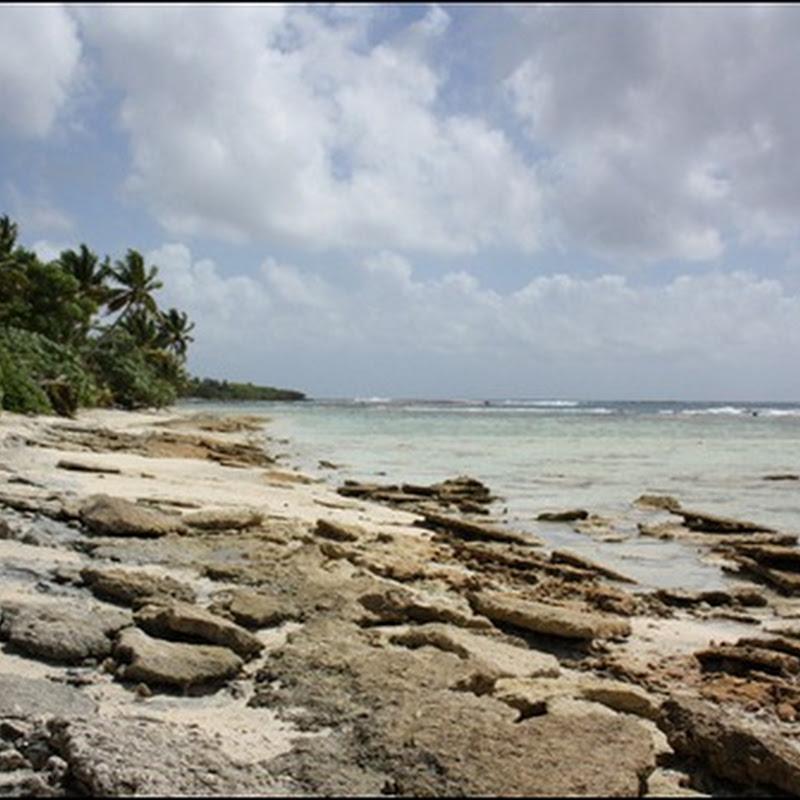 Walking the reefs