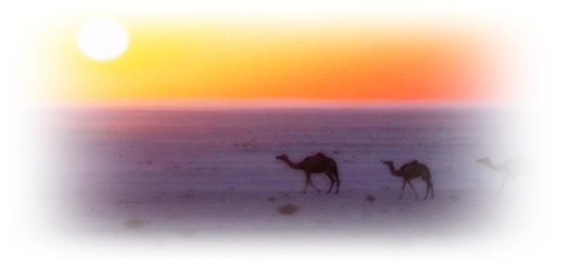 tramonto-nel-deserto