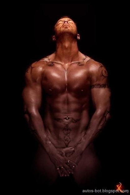 gym-body