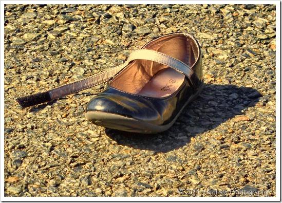 Shoep1020024
