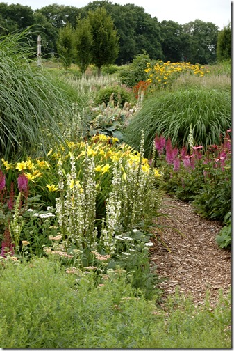 sussex prairie garden 020
