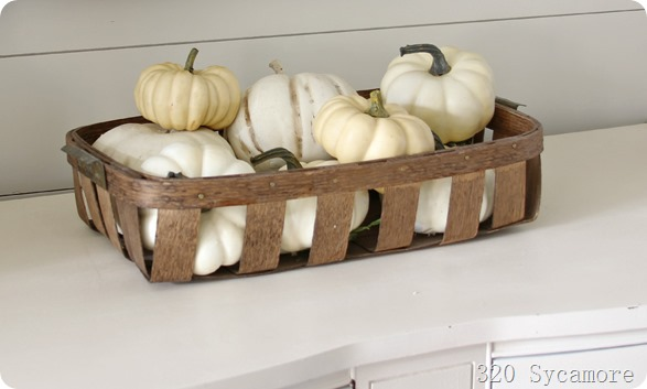 white pumpkins in basket