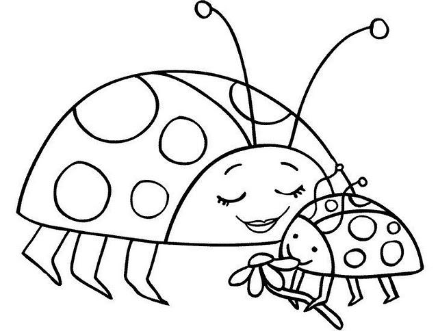 Dibujo De Mariquita Infantil Para Colorear Dibujos